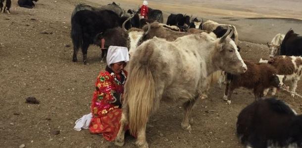 От Памира до Кыргызстана